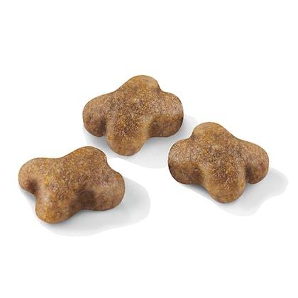 AR-L-Croqueta-Kitten-Feline-Health-Nutrition-Seco