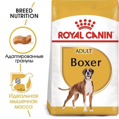 RC-BHN-Boxer-MV-Eretailkit_rus