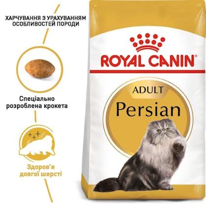 RC-FBN-Persian_1-UA.jpg