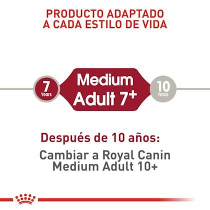MEDIUM ADULT 7+ COLOMBIA 3