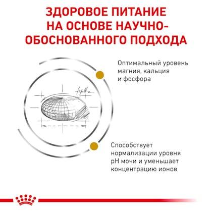 RC-VET-DRY-CatUrinarySO-Eretailkit-B1_03