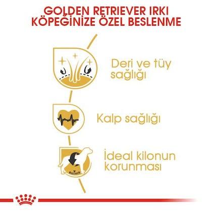 Royal Canin Golden Retriever Adult Köpek Maması 3