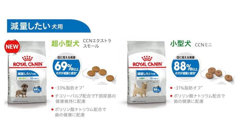 401-japan-local-ca-ccn-renewal-xs-mini-light-weght-care