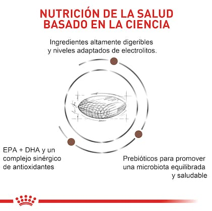 VHN GASTROINTESTINAL LOW FAT COLOMBIA 4