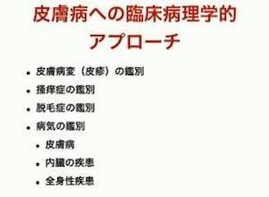 350-japan-local-ca-vet-sensitive-skin