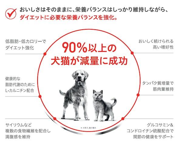 400-japan-local-ca-ccn-renewal-detail