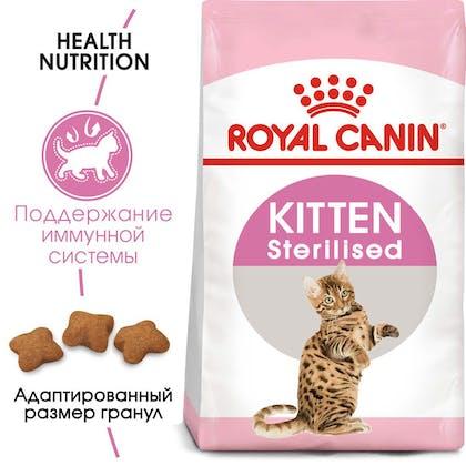 RC-FHN-KittenSterilised-MV-EretailKit_rus