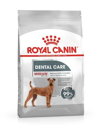 Medium Dental Care