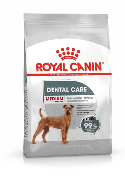 MEDIUM DENTAL  CCN PACKSHOT