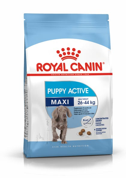 PACKSHOT-PUPPY ACTIVE MAXI_SHN17