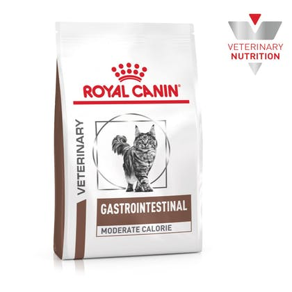 VHN-BrandFlagship-Hero-Images-Gastrointestinal Moderate Calorie Cat Dry-B1