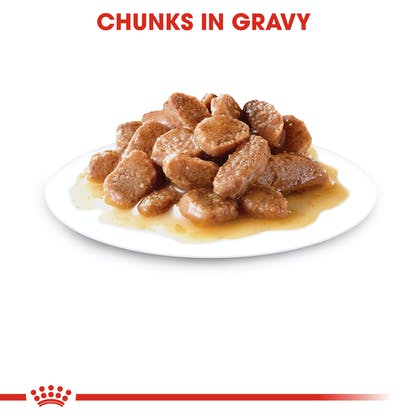 FCN-Wet-UrinaryCareGravy-CV-Eretailkit-3