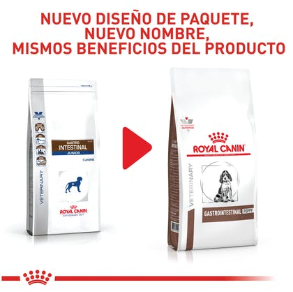 VHN GASTROINTESTINAL PUPPY COLOMBIA 2