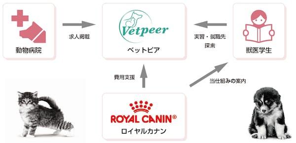 397-japan-local-ca-vet-student