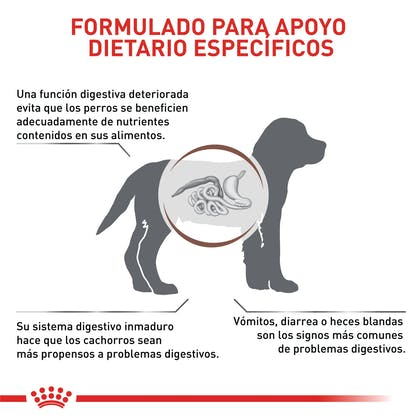 VHN GASTROINTESTINAL PUPPY COLOMBIA 3