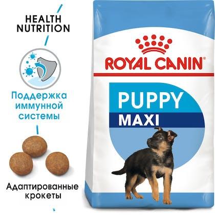 Maxi Puppy hero