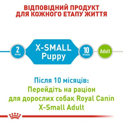 RC-SHN-PuppyXSmall_2-UA.jpg