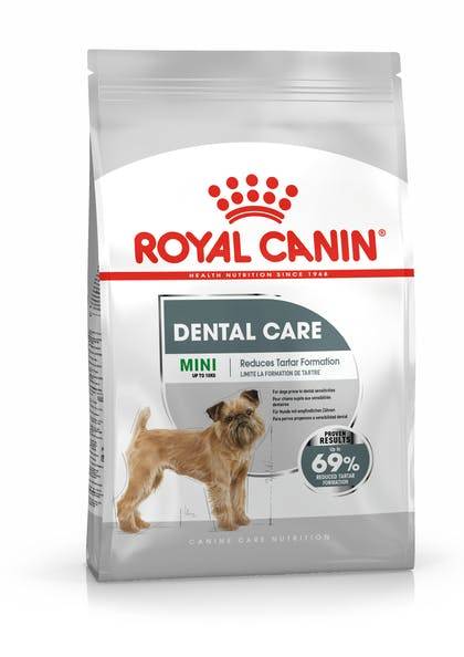 MINI DENTAL CCN PACKSHOT