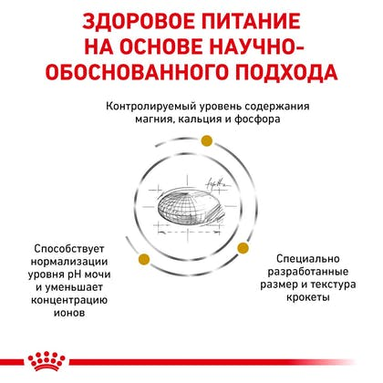 RC-VET-DRY-DogUrinarySOSD-Eretailkit-B1_3