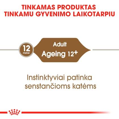 RC-FHN-Wet-Ageing12Gravy-CV-Eretailkit-1-lt_LT