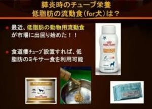 348-japan-local-ca-vet-pancreatitis
