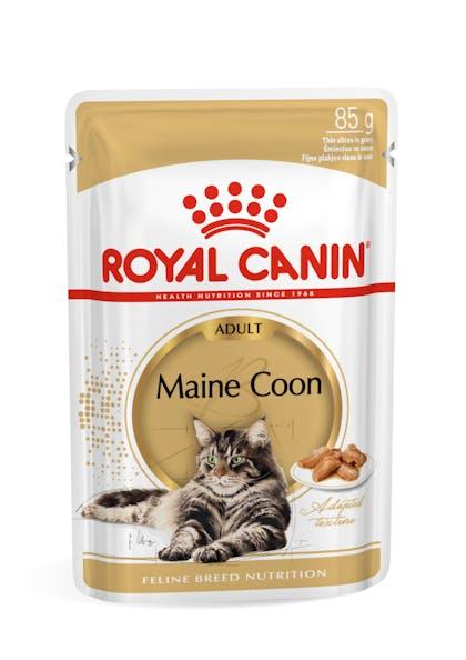 Πλήρης και ισορροπημένη τροφή για γάτες φυλής Maine Coon, άνω των 15 μηνών