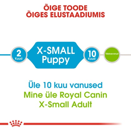 RC-SHN-PuppyXSmall-CV1_007_ESTONIA-ESTONIAN