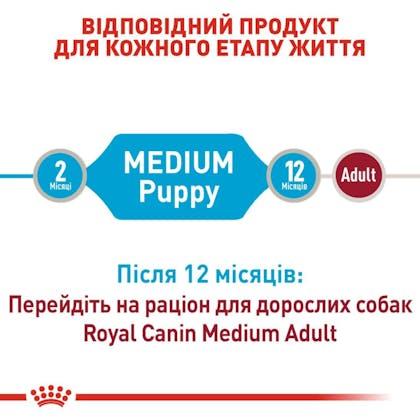 RC-SHN-Wet-MediumPuppy_3-UA.jpg