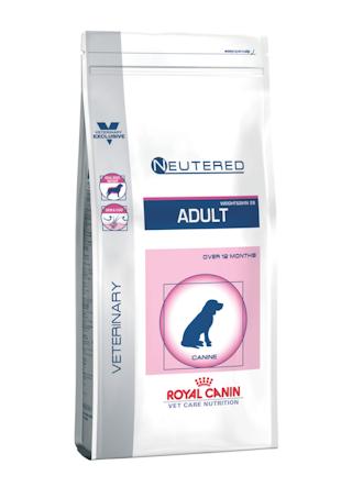 Neutered Adult Medium Dog