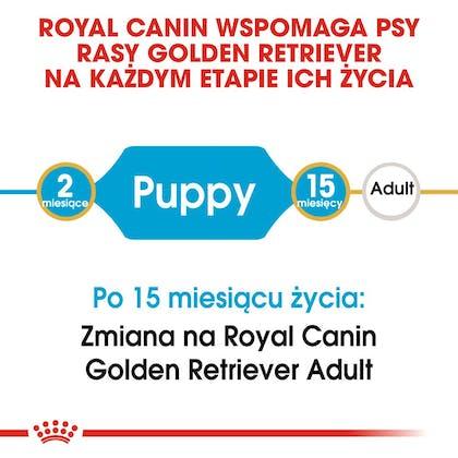 RC-BHN-PuppyGoldenRetriever-CM-EretailKit-1-pl_PL