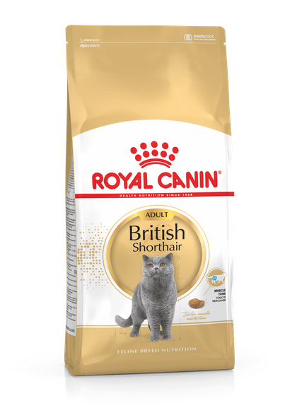 FBN2016_PACKSHOT_BRITISH SHORTHAIR_ADULT
