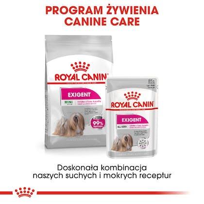 RC-CCN-Wet-Exigent-CV-Eretailkit-4-pl_PL