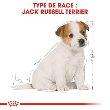 RC-BHN-PuppyJackRussell-CM-EretailKit-4-fr_FR