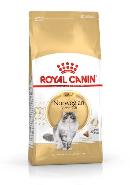 FBN2016_PACKSHOT_NORWEGIAN FOREST CAT