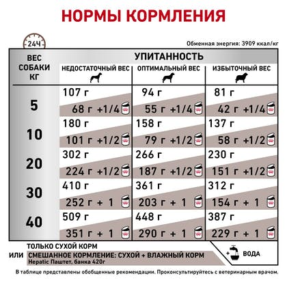 RC-VET-DRY-DogGastroHEP-BrandFlagship_rus6