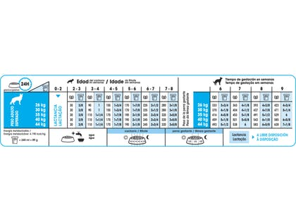 AR-L-Tabla-Racionamiento-Starter-Maxi-Size-Health-Nutrition-Seco