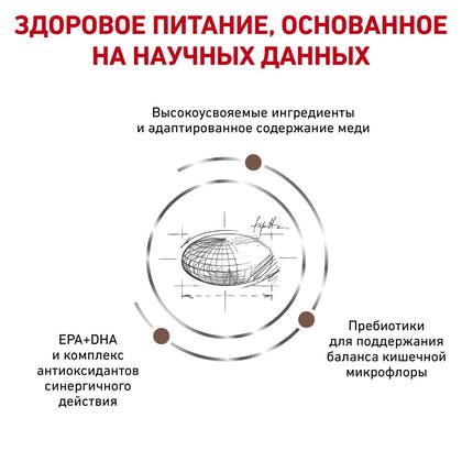 RC-VET-DRY-CatGastroHE-BrandFlagship_rus4