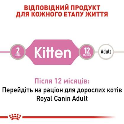 RC-FHN-Wet-KittenInstinctiveLoaf_2-UA.jpg