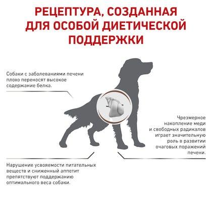 RC-VET-DRY-DogGastroHEP-BrandFlagship_rus3