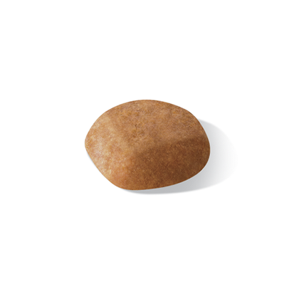 AR-L-Croqueta-Golden-Retriever-Junior-Breed-Health-Nutrition-Seco