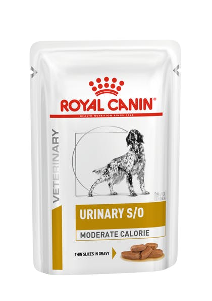 VHN-URINARY-URINARY S/O MODERATE CALORIE DOG SIG POUCH-POUCH PACKSHOT