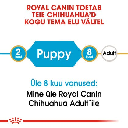 RC-BHN-PuppyChihuahua-CM-EretailKit-1-et_EE