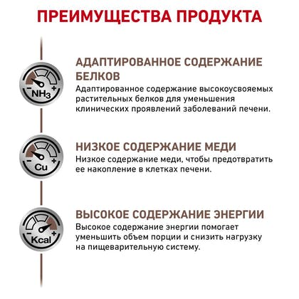 RC-VET-DRY-DogGastroHEP-BrandFlagship_rus5