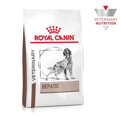 VHN-BrandFlagship-Hero-Images-Gastrointestinal Hepatic Dog Dry-B1