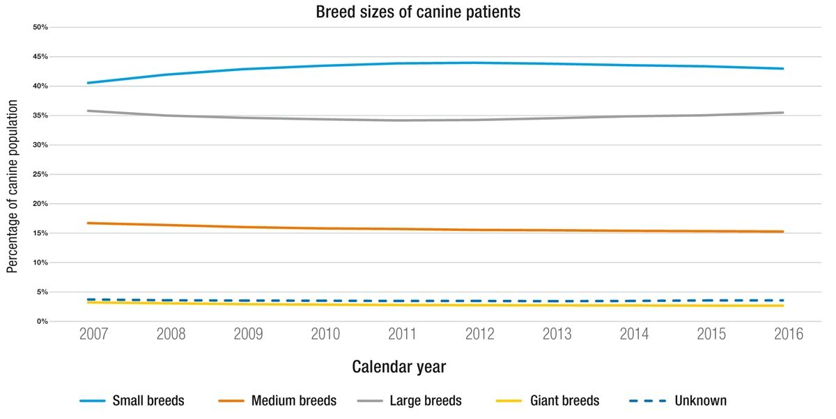 Size trends in the dogs seen at Banfield Pet Hospitals over the last 10 years.
