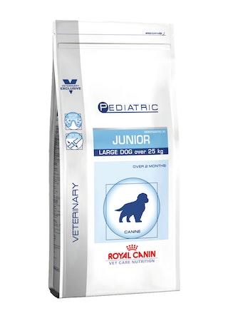 Pediatric Junior Large Dog