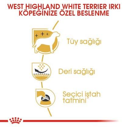 Royal Canin West Highland White Terrier Adult Köpek Maması 3