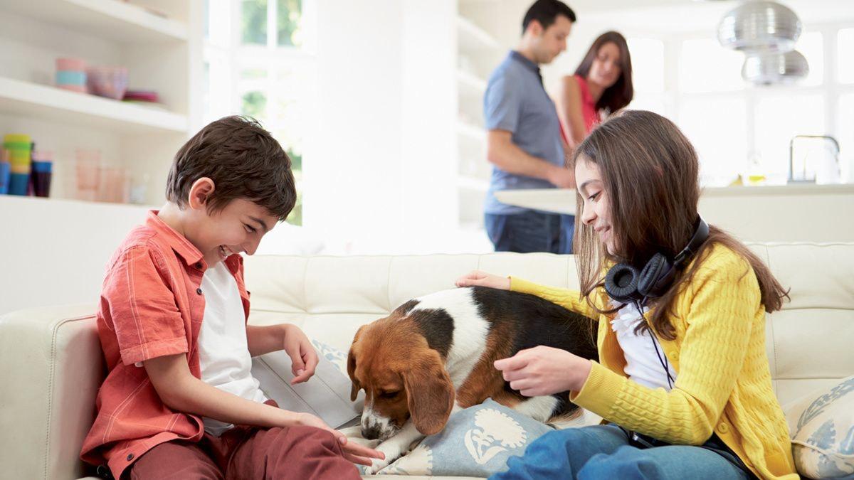 Die Kind-Tier-Bindung