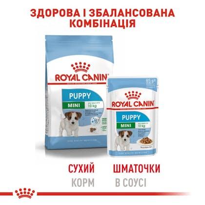 RC-SHN-Wet-MiniPuppy_5-UA.jpg