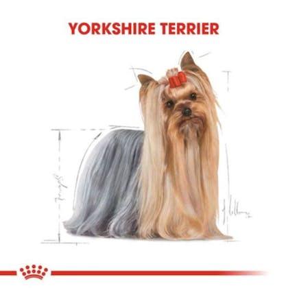 Royal Canin Yorkshire Terrier Adult Köpek Maması 1